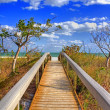 Stock Photo: Walkway to ocean