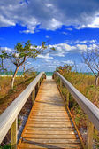 Walkway to the ocean — Stock Photo