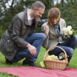 Couples by picnic - Stock Photo