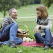 Conversation by picnic - Stock Photo