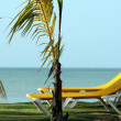 Stock Photo: Chaise Longues on the beach