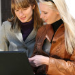 Women working with laptop in city park — Stock Photo