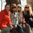 Постер, плакат: Friends relaxing outdoor