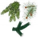 分支机构毛皮-树 — 图库矢量图片
