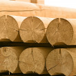 Round timber - Stock Photo