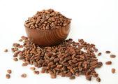 Siberian pine nuts — Stok fotoğraf