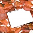 Royalty-Free Stock Photo: Blank note paper