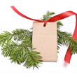 Blank gift tag — Stock Photo #1592776