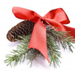 Decorated christmas-tree — Stock Photo #1606255