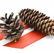 Cones with red ribbons - Stock Photo