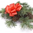 Decorated christmas-tree branch — Stock Photo