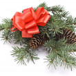 Decorated christmas-tree branch - Stock Photo