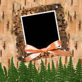 Frame with bow to birchen bark — Stock Photo