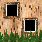 Two frame to birchen bark with fern — Stock Photo