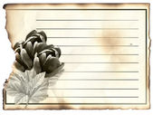 Blank post card for condolence — Stock Photo