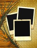 Trzy ramki na zdjęcia — Zdjęcie stockowe