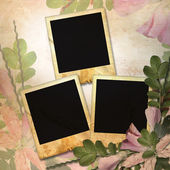 Vintage background with three frames for — Stock Photo
