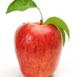 Apple on a white background — Stock Photo