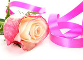 Rose and pink tape — Stock Photo