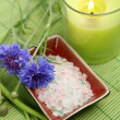 Green candle and salt — Stock Photo