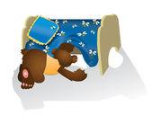 Bear cub titta under en säng — Stockfoto