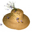 Straw hat — Stock Photo #1442901