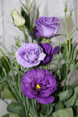 Bouquet gentile flowers — Stock Photo