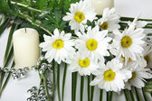 Daisywheels with candel — Stock Photo