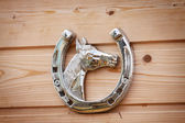 Horseshoue — Stock Photo