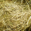 Hay stack — Stock Photo #1231871
