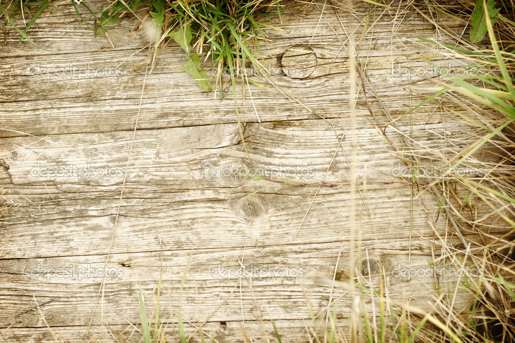 Wood Frame Texture : Wooden texture frame — Stock Photo © mari_art #1233727