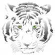 White tiger vector - Stock Photo