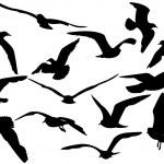 Flying sea-gulls vector illustration — Stock Vector #1194620