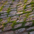 Old cobble road - Stock Photo