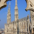 Milan cathedral — Stock Photo #1207378