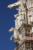 Architectural details of Siena duomo — Stock Photo