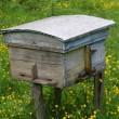 landsbygdens trä bikupan — Stockfoto