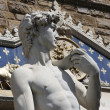 David by Michelangelo in Florence,Italy - Stock Photo