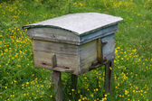 Rural wooden bee hive — Stock Photo
