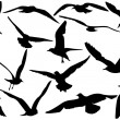 Flying sea-gulls vector illustration — Stock Vector