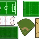 Sport fields illustration — Stock Vector