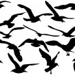 Flying sea-gulls vector illustration - Imagens vectoriais em stock