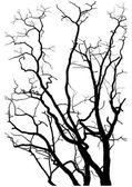 Silueta de ramas de árbol — Vector de stock