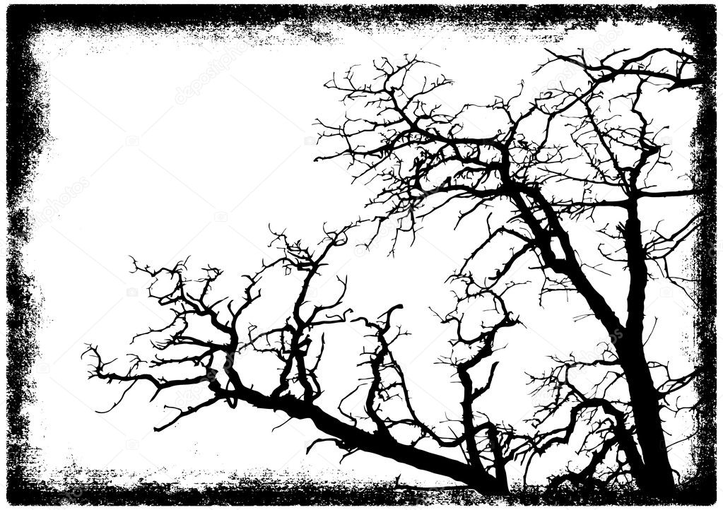 Tree branches silhouette in grunge frame vector illustration — Stock Vector #1232365