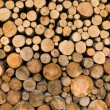 Logs of fire wood — Stock Photo #1165075