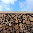 Wooden logs on blue sky - Stock Photo