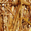 Straw background — Stock Photo #1262663
