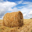 Hay bales — Stock Photo #1262994