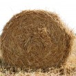 Hay bales — Stock Photo #1263011