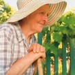 Foto Stock: Old woman working in the garden